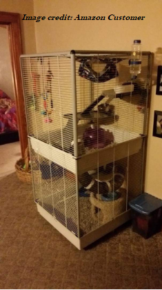 Ferret Care Suitable Ferret Cages To Choose From Small