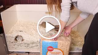 aspen bedding and kaytee clean & cozy